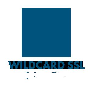 SSL là gì? Tầm quan trọng của SSL